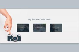 Portfolio – Collections