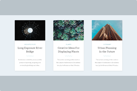 WordPress carousel post slider