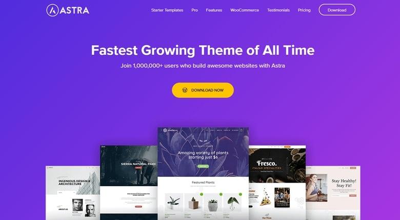 Astra Theme for WordPress