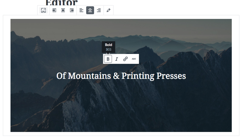 Editing the text in Gutenberg