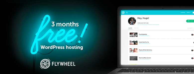 Flywheel WordPress Black Friday Deal