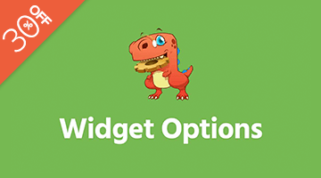 Widget Options WordPress Black Friday Deal