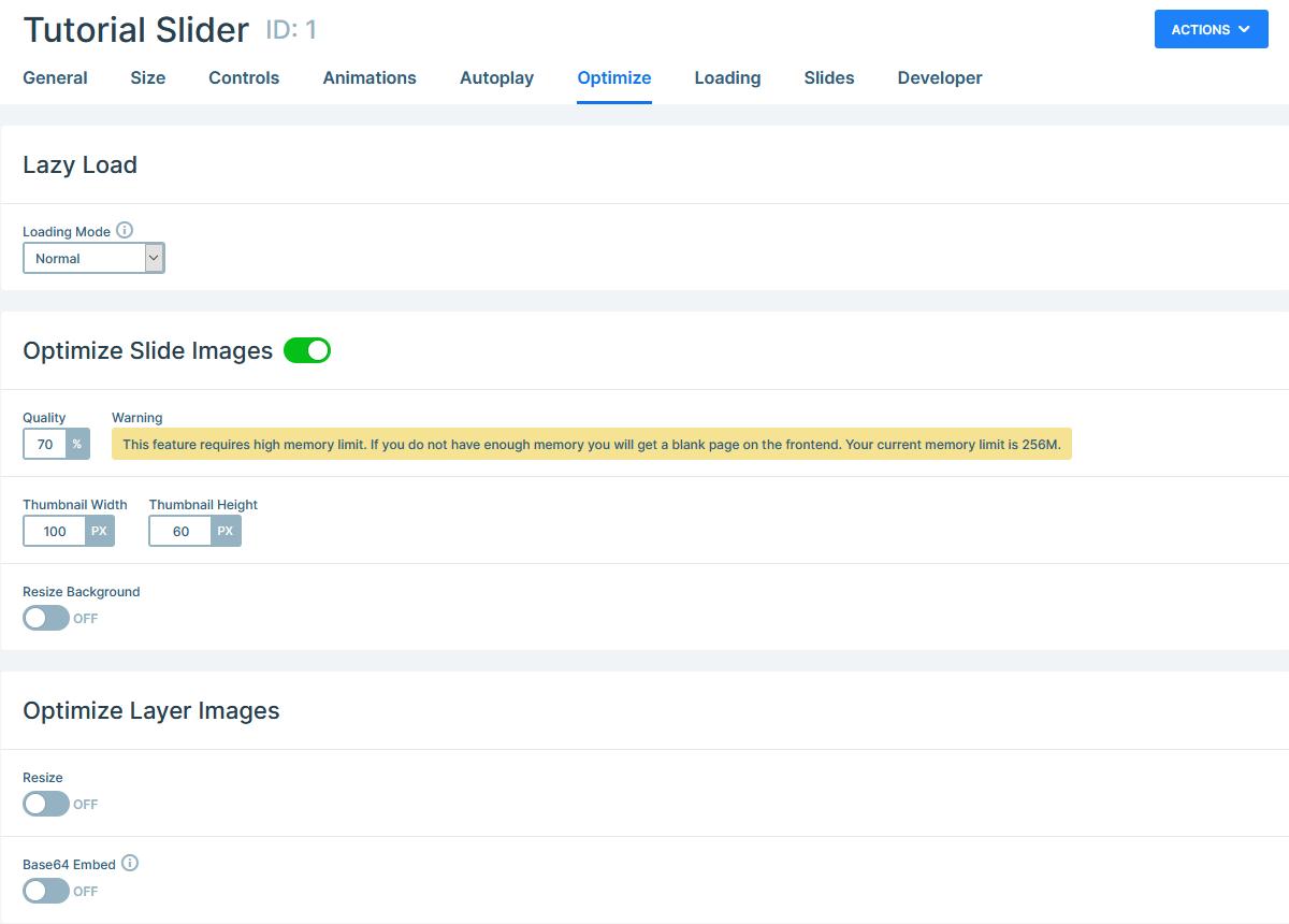 Smart Slider Optimization options