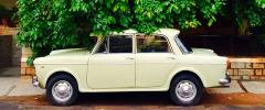 The Mysterious Case of Car Design